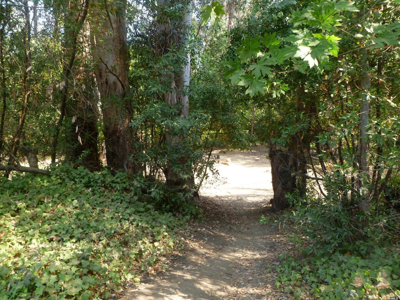 2394 Lone Oak Avenue