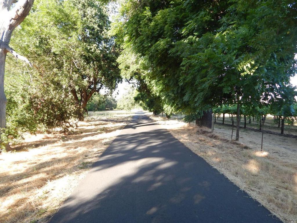 1074 Vineyard Lane