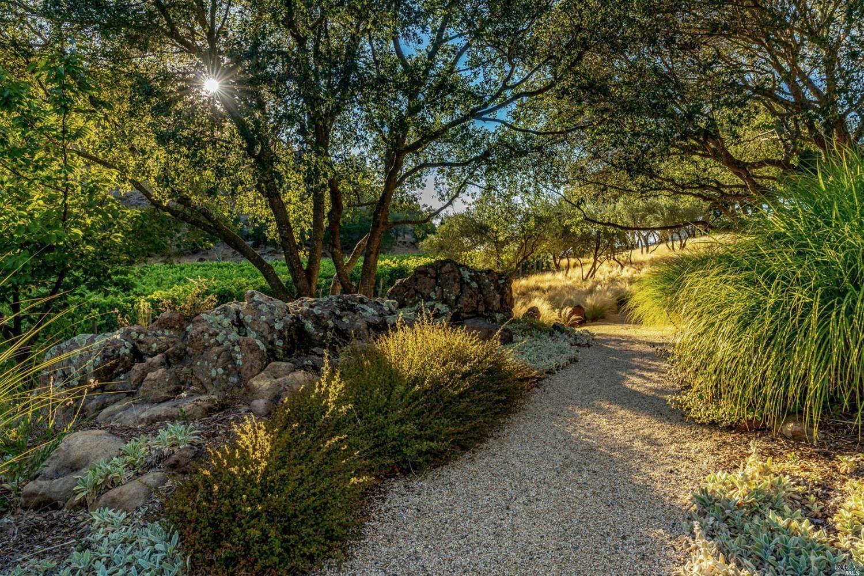 3225 Soda Canyon Road