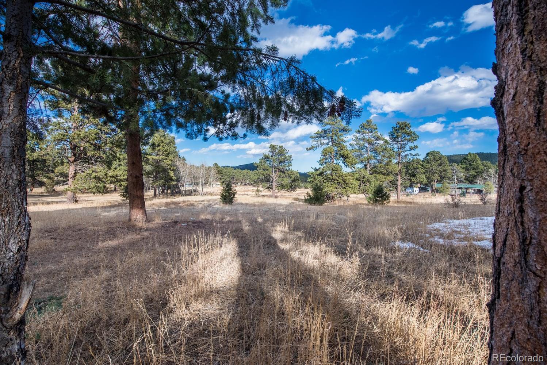 7844  Native Dancer Trail photo