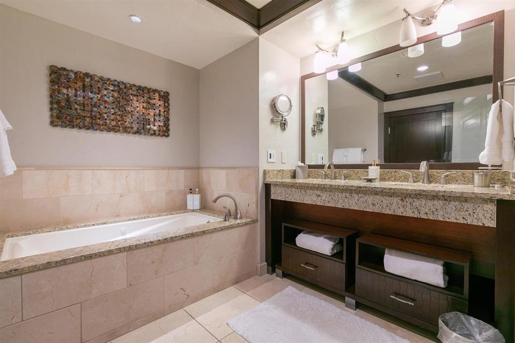 13051 Ritz Carlton Highlands Ct, #4205