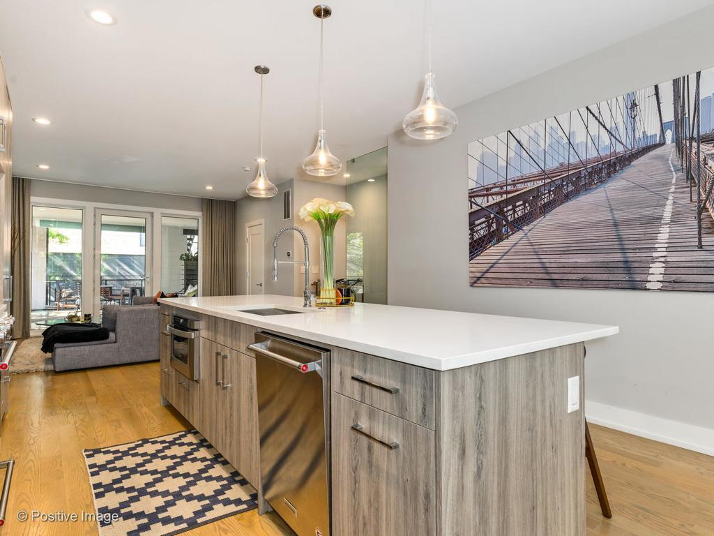 1610 S Carpenter Street # 1S preview