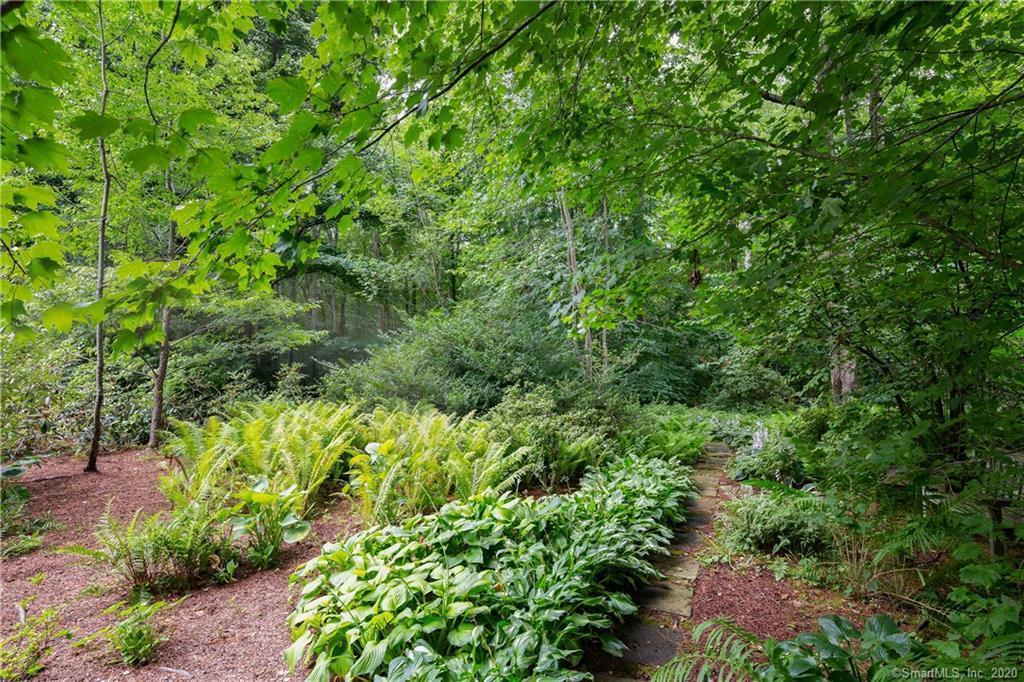 5 Hummingbird Lane preview