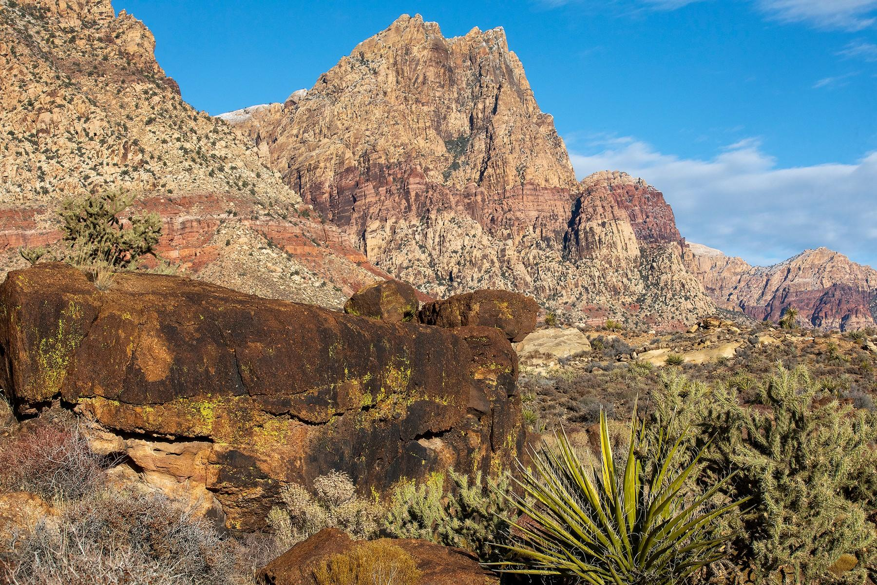5 Red Rock Springs Drive