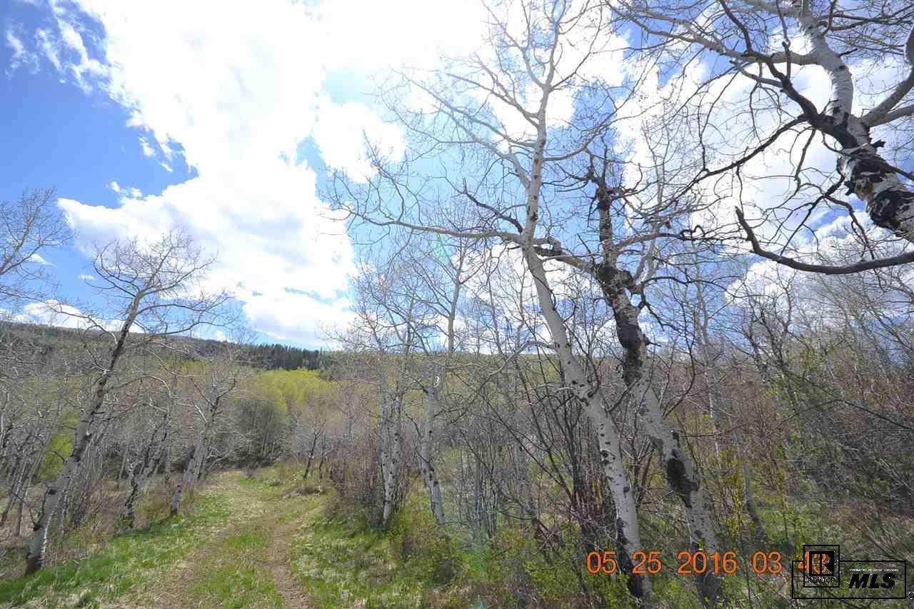 23655  Silverado Road photo