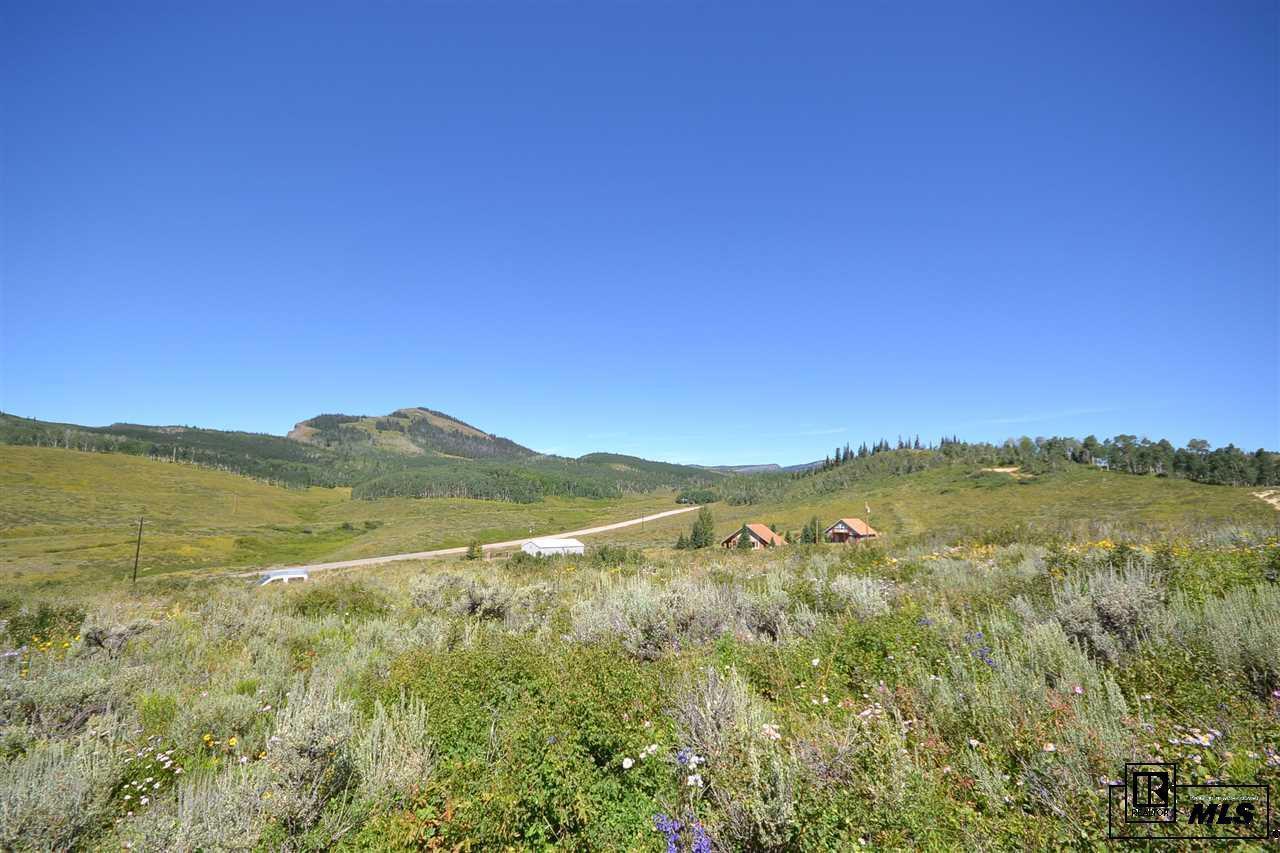 123  CO 281 Lower Bear Mtn Rd. photo