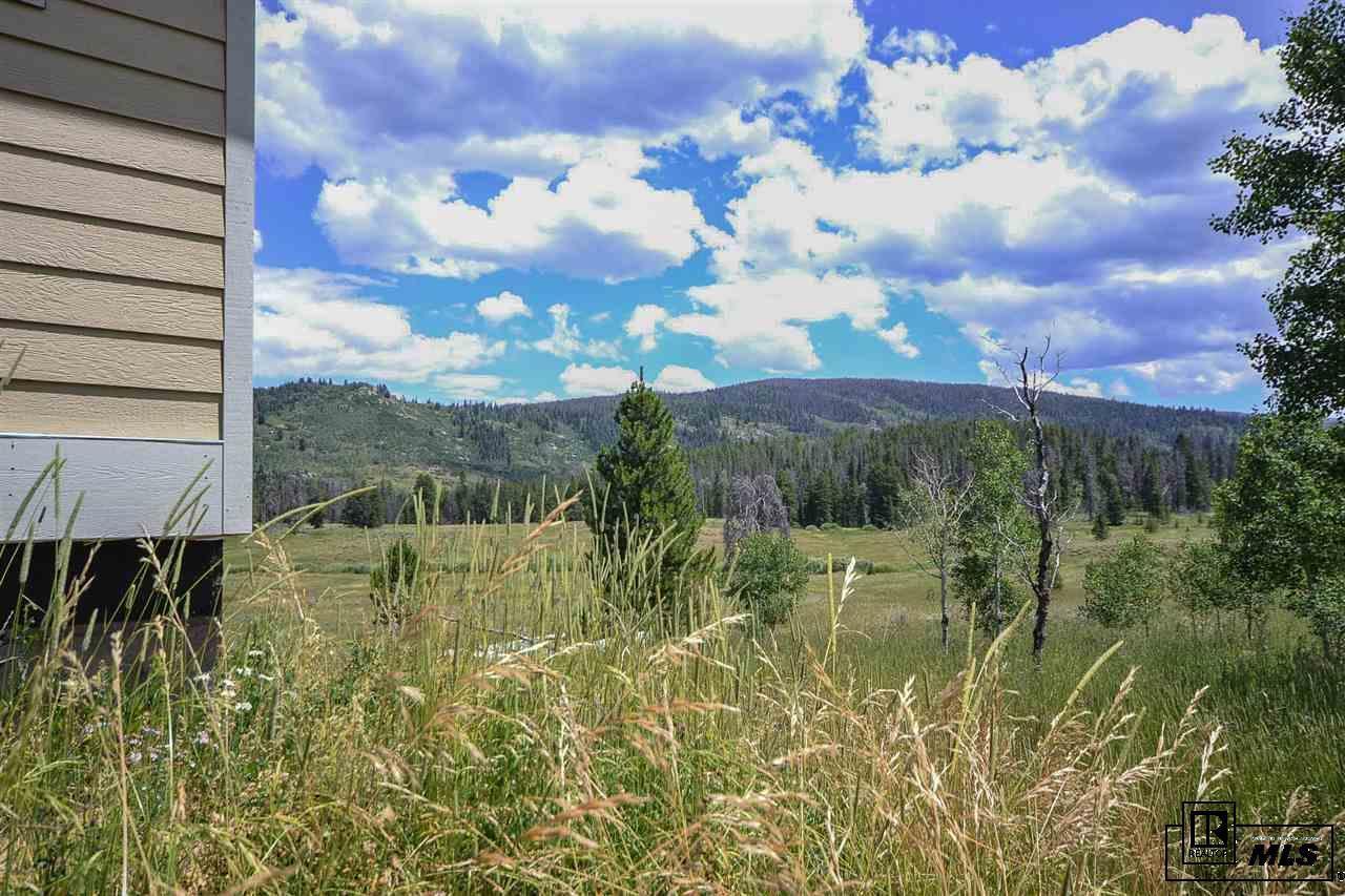 20690  Cinch Trail photo
