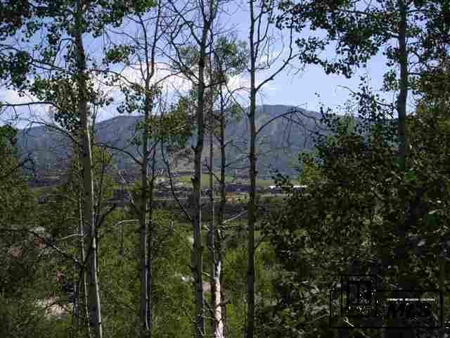 TBD  Tree Haus Drive photo