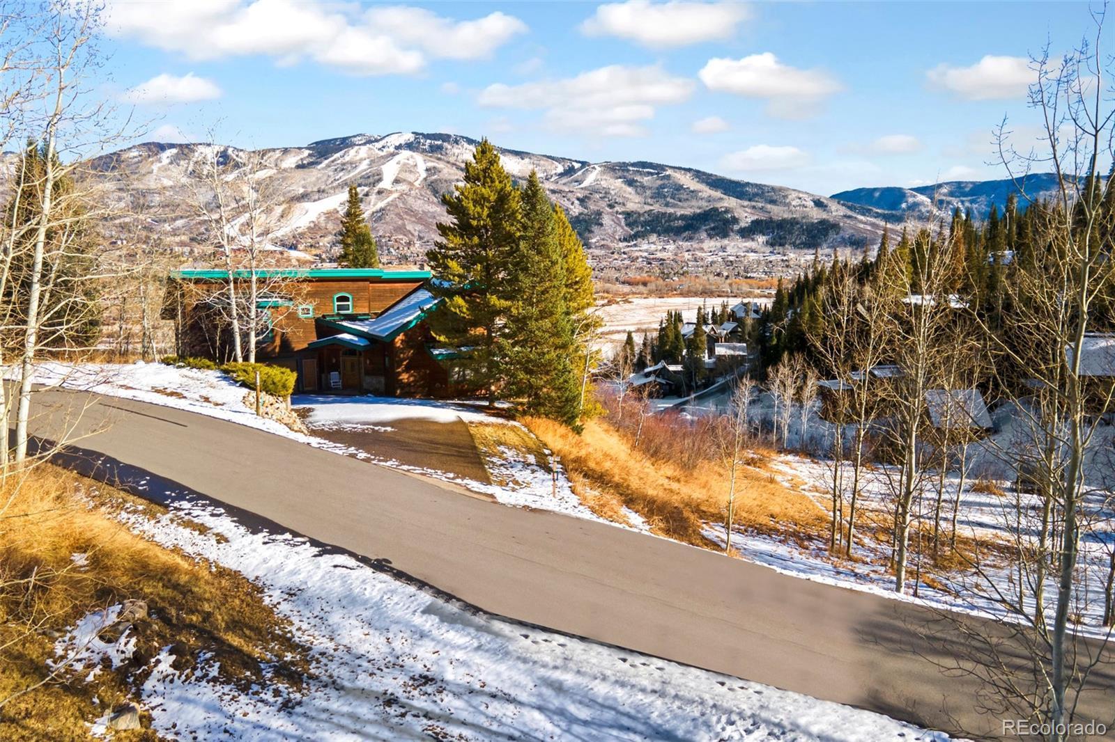 36867  Tree Haus Drive photo