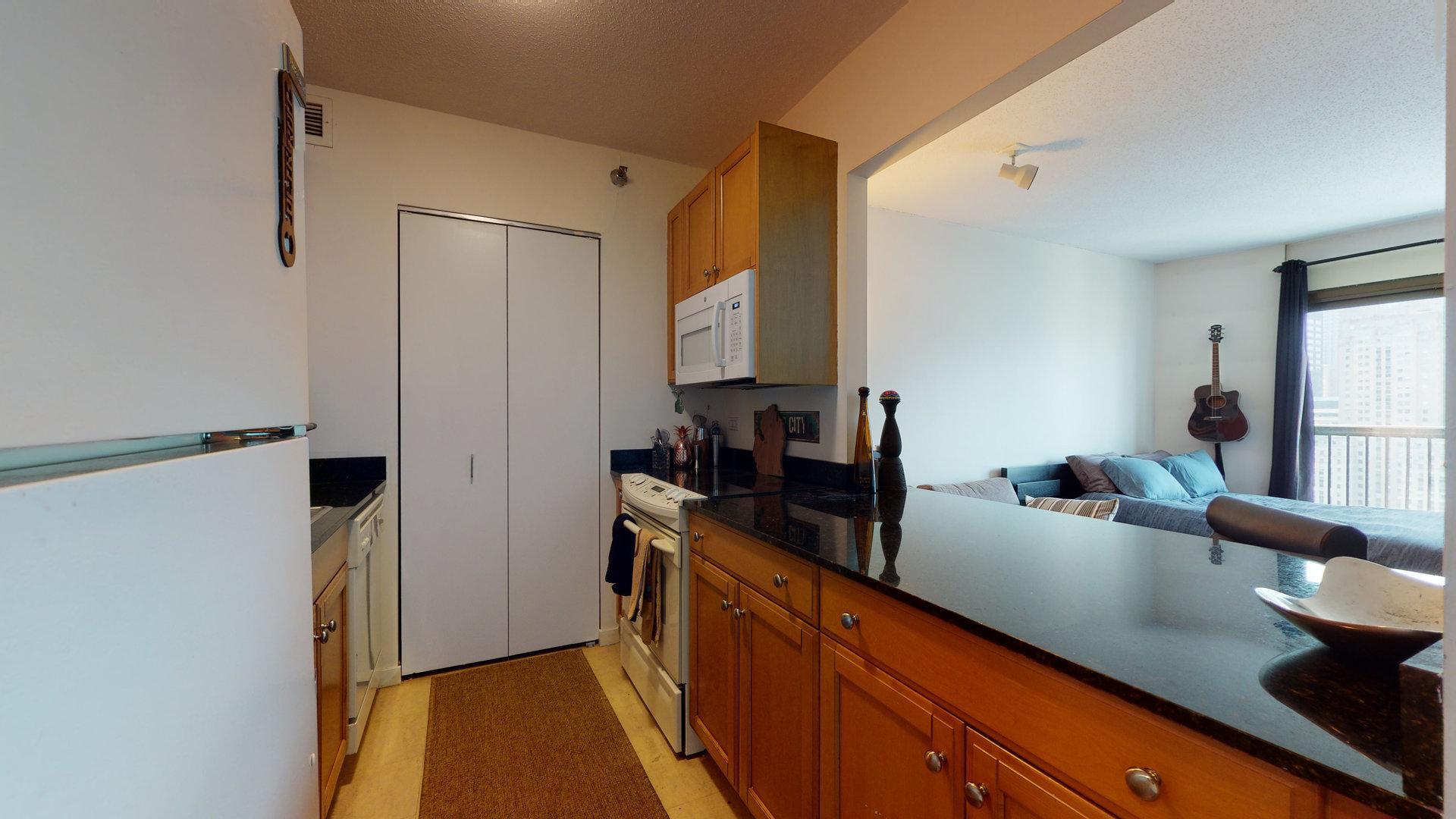 400 N Lasalle  Drive, Unit 3406 photo