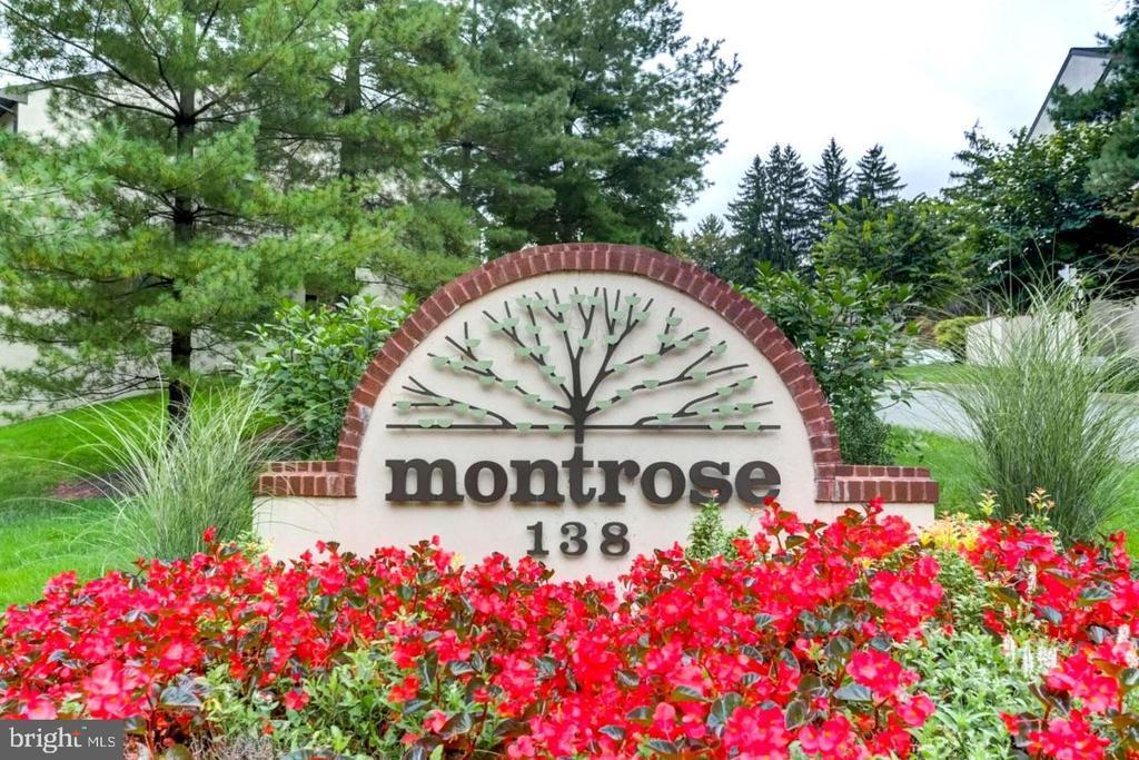 138 MONTROSE AVE #33 photo