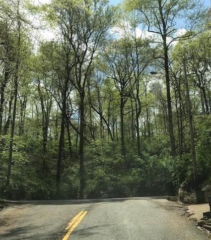 0 Jocelyn Hollow Road  photo