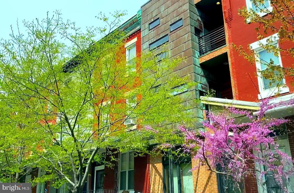 4143 CAMBRIDGE STREET photo