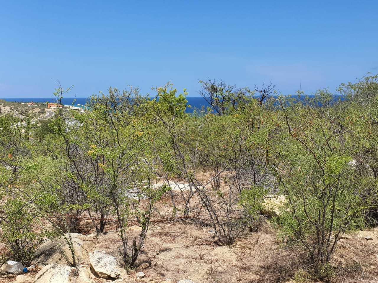 Piedra gordas in Buena Vista
