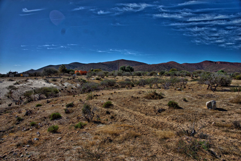 Camino Las Barriles-Cardonal