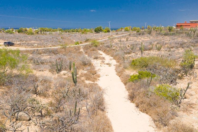 Camino Las Playitas