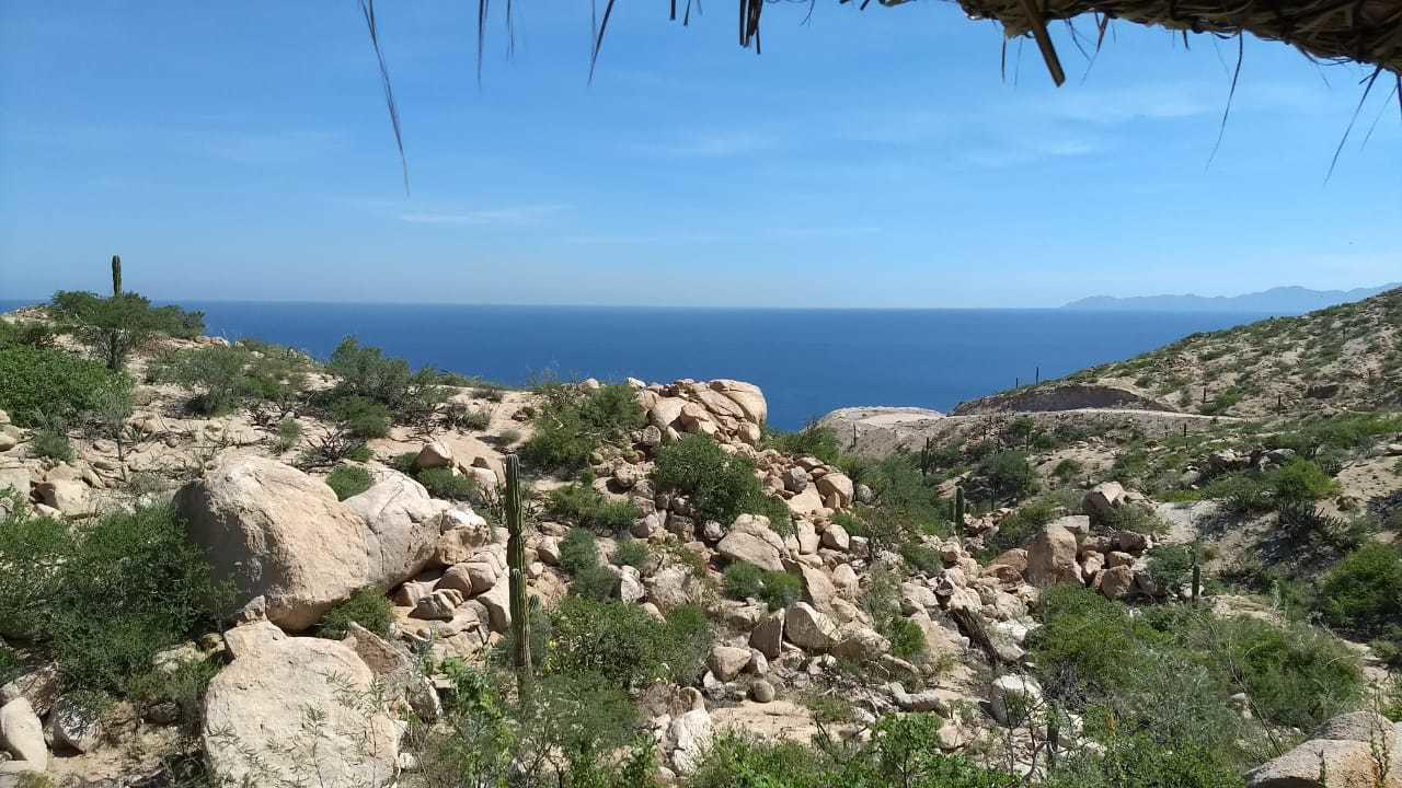 Paraiso Piedra Mexia