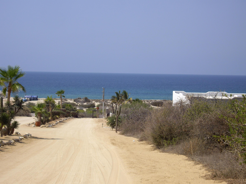 Callo Cangrejo Baja Sur