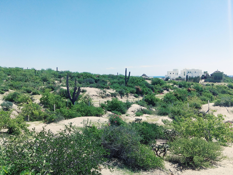 Rancho Tortugas Manzana 13