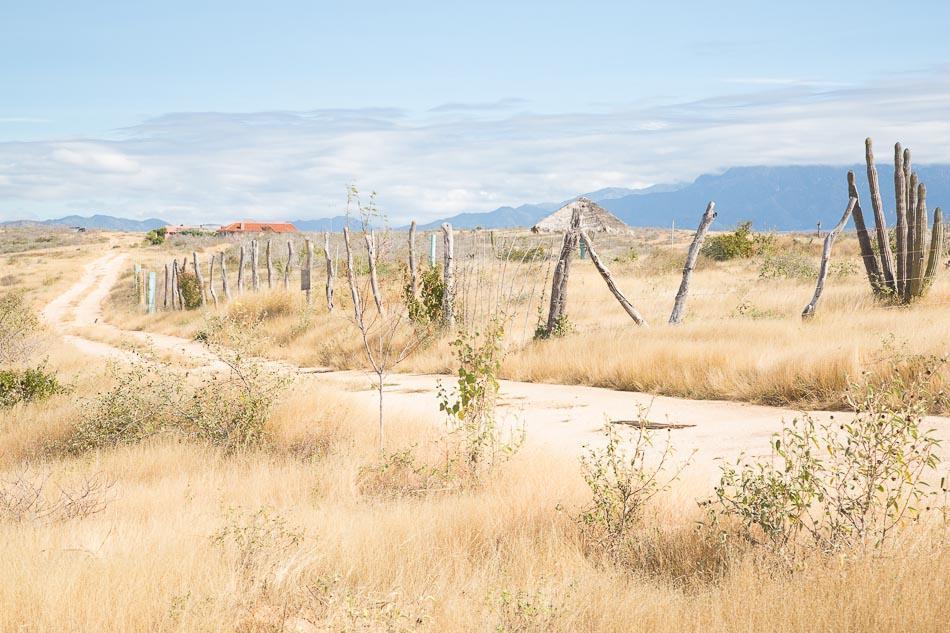0621 Alta Vista