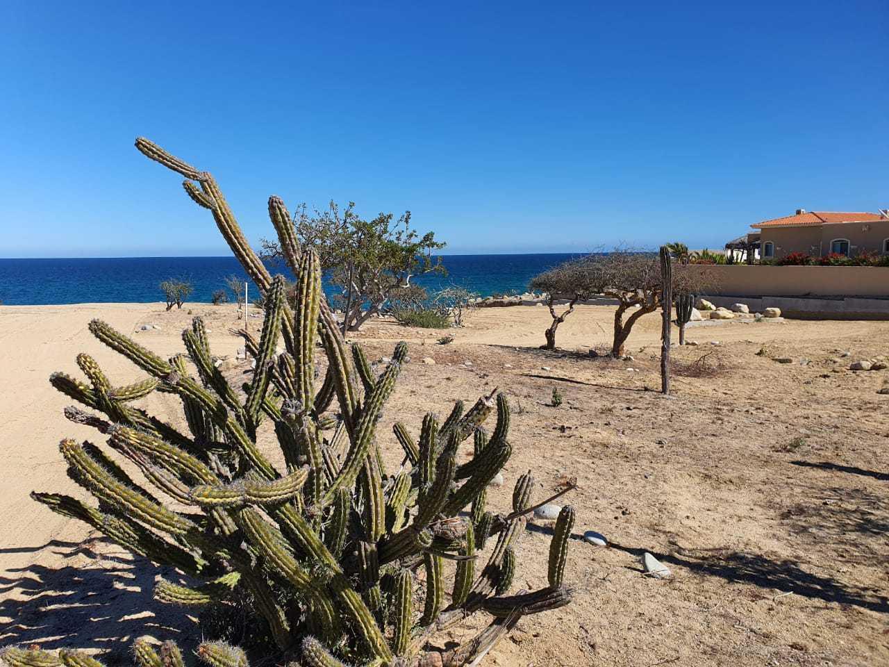 Abel's beach north