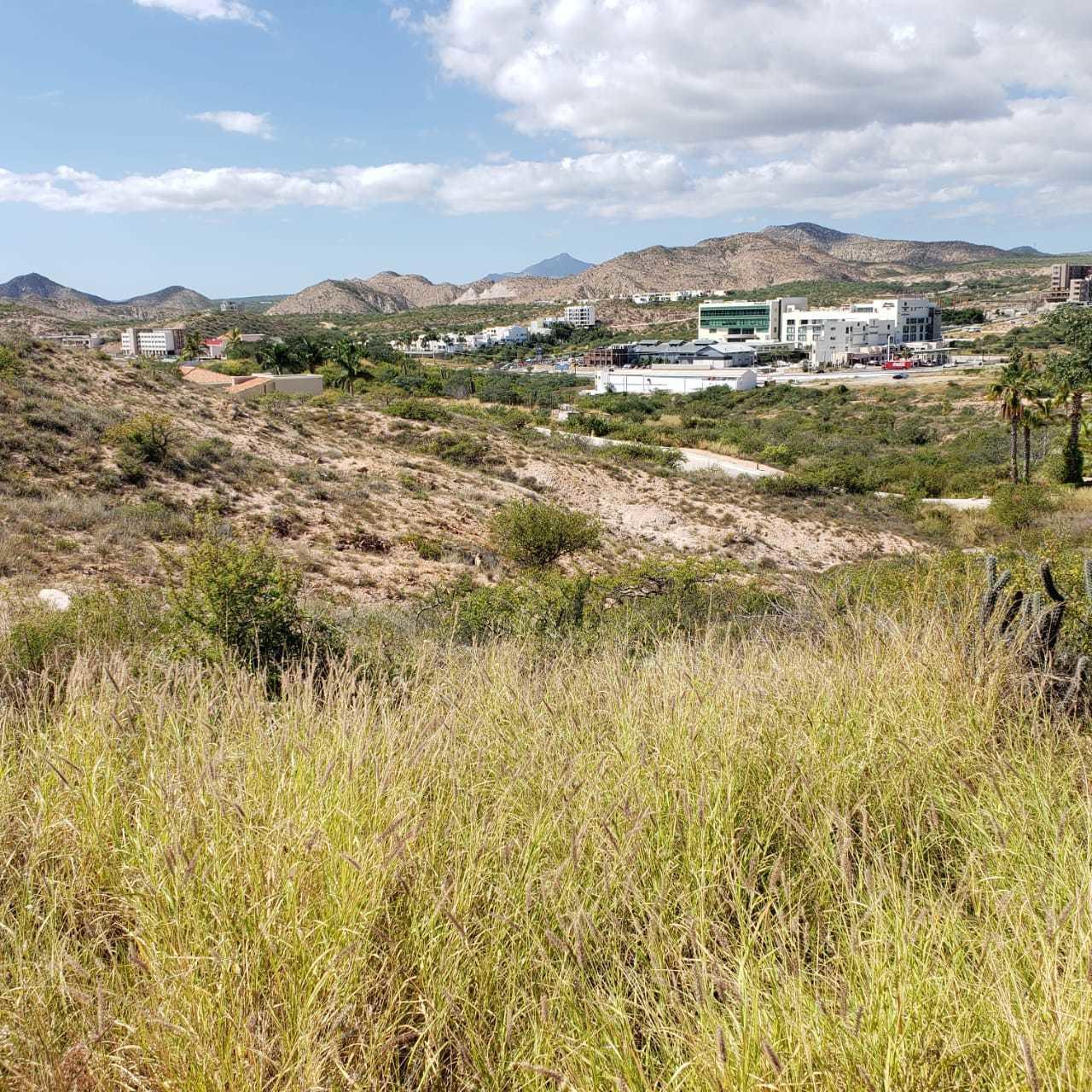 Lote 7/4 Cerro Colorado