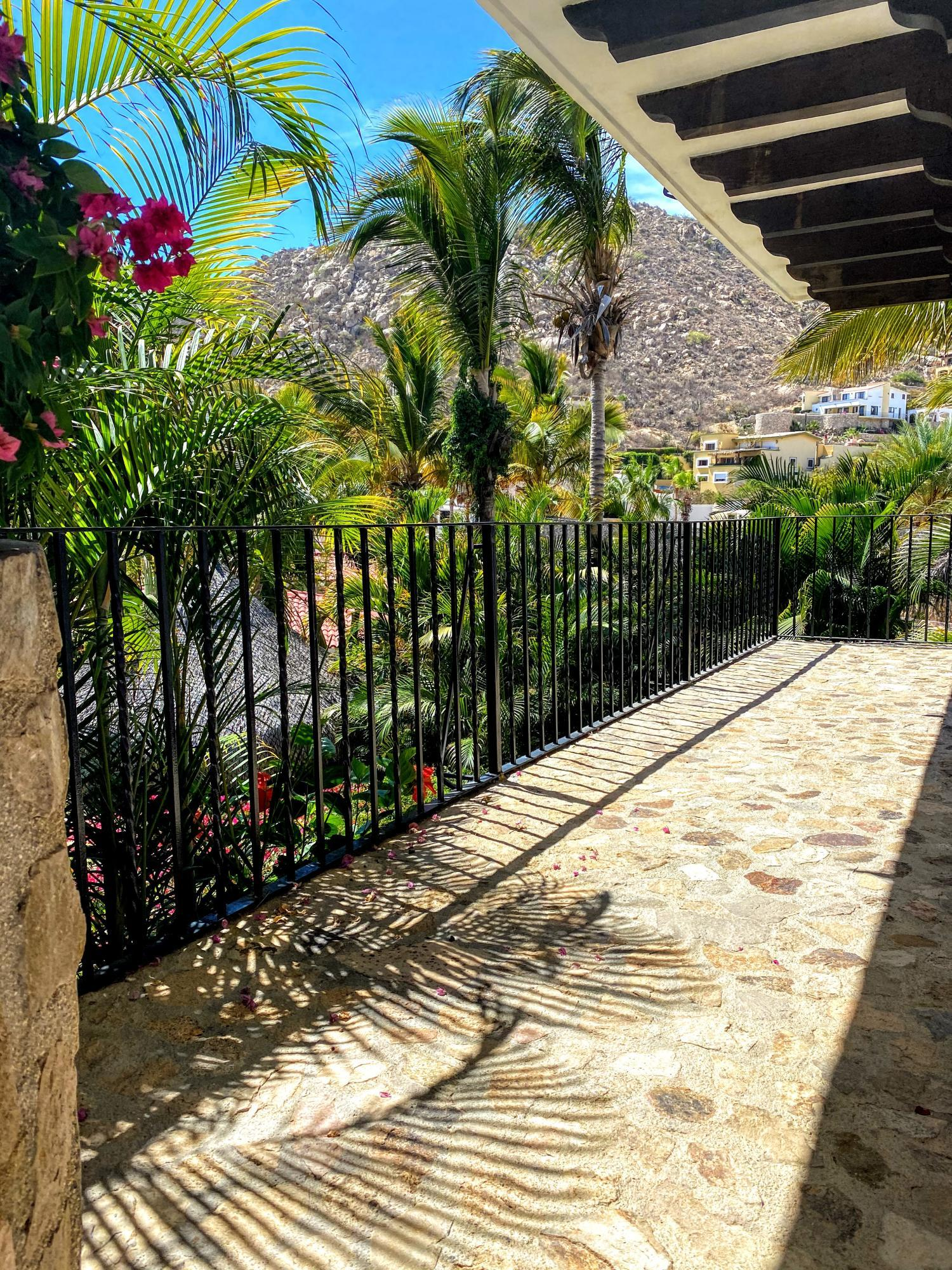 Camino del Parque # Margarita