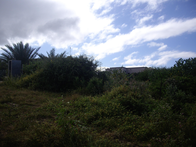 Calle Hacienda Eureka