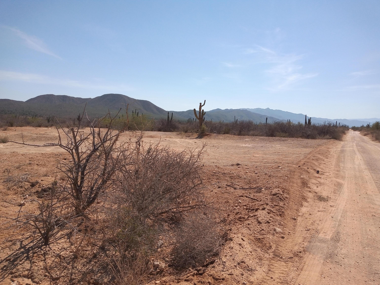 1401 Camino a Bahia Turquesa