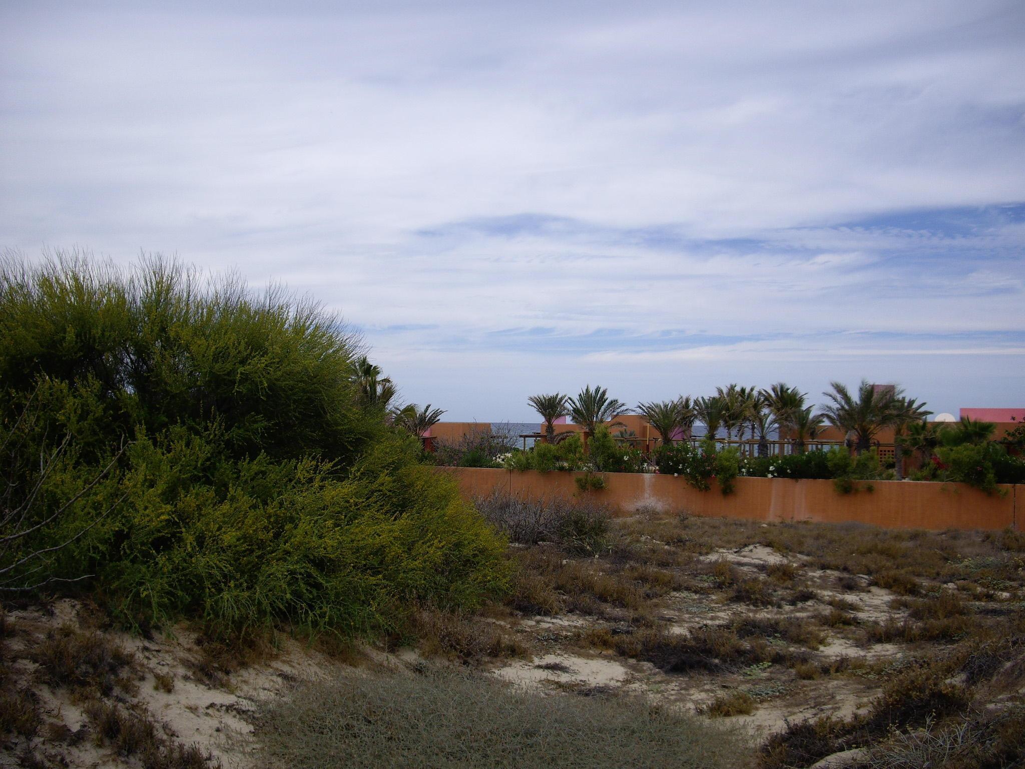 Hacienda Eureka
