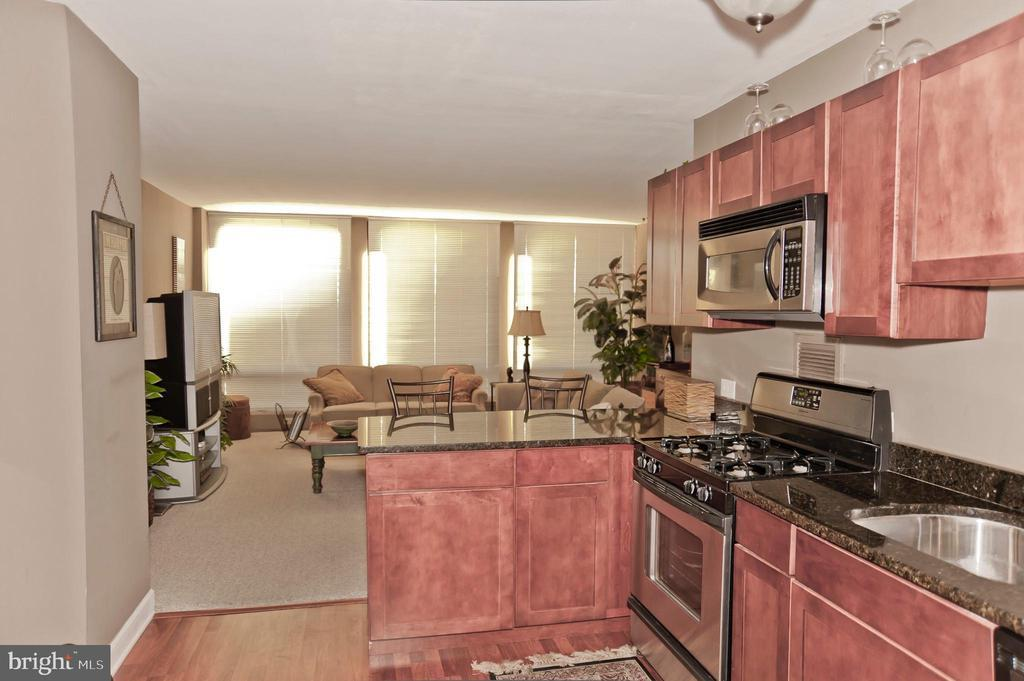 220 LOCUST ST #4F preview