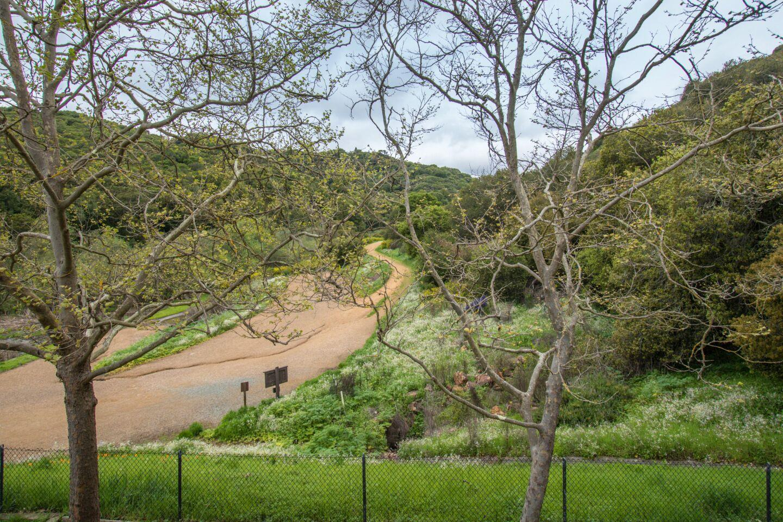 770 Canyon Oaks Dr, F preview