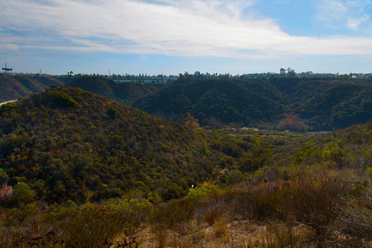 6680 Canopy Ridge Ln  1 photo