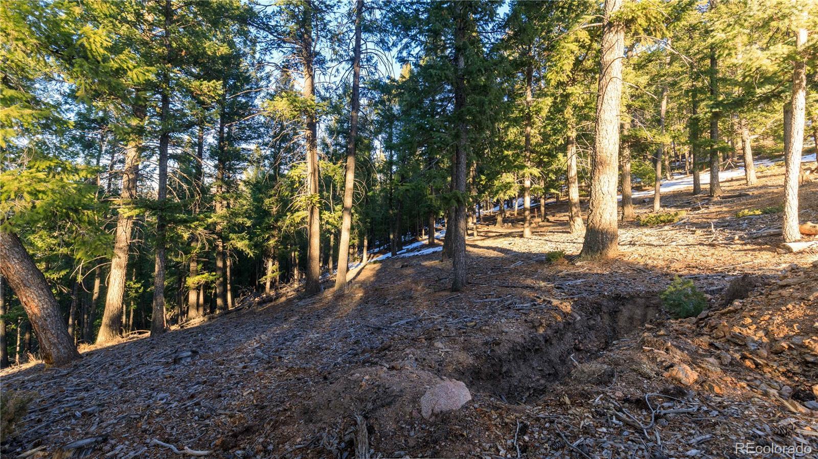 6913  Singing Springs Lane photo