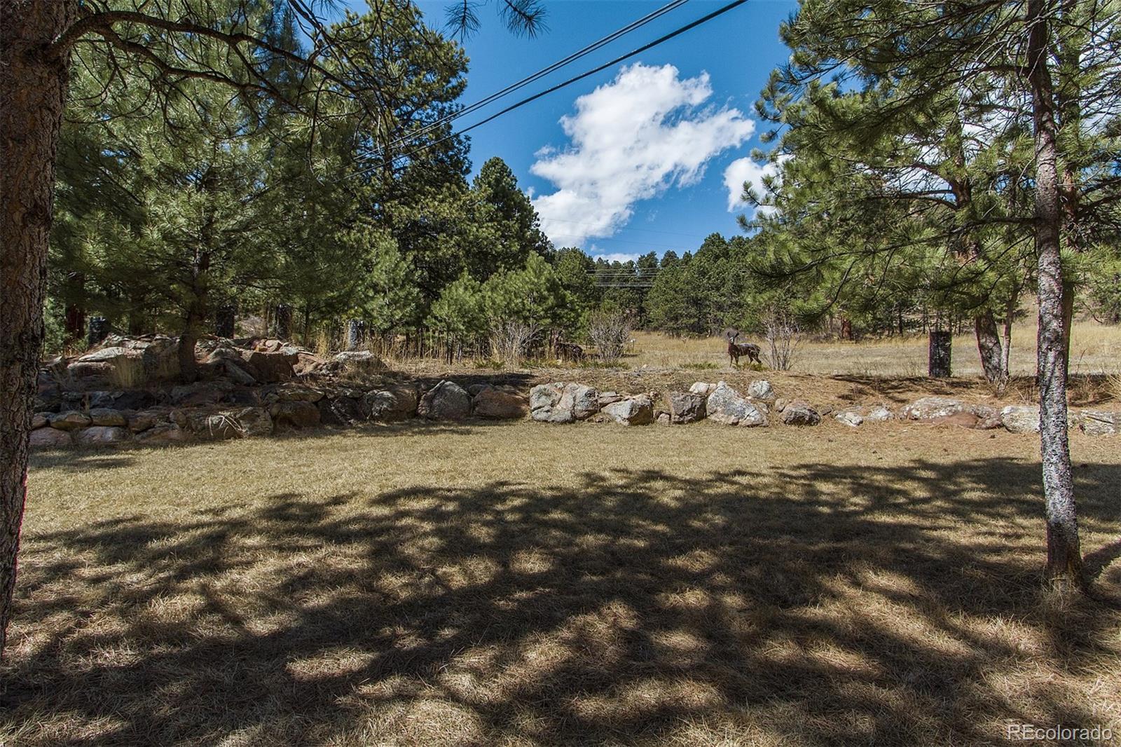 13361  Douglas Ranch Drive preview
