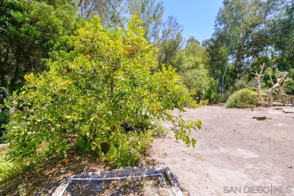 4954 Sun Valley Rd photo