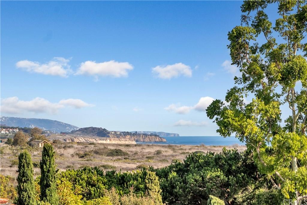 4 Shoreline photo