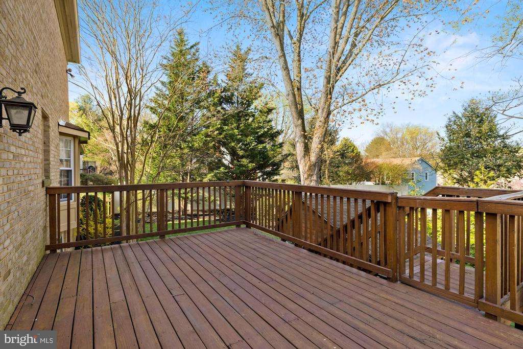 1539 BLUE MEADOW RD preview