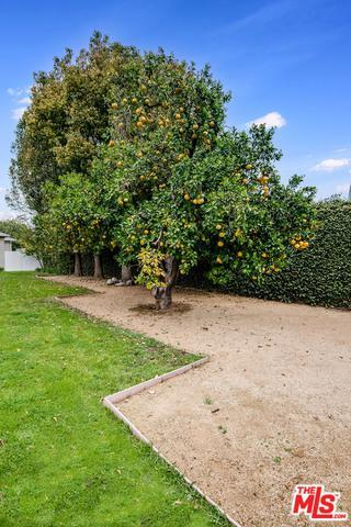 11538 Chiquita St photo