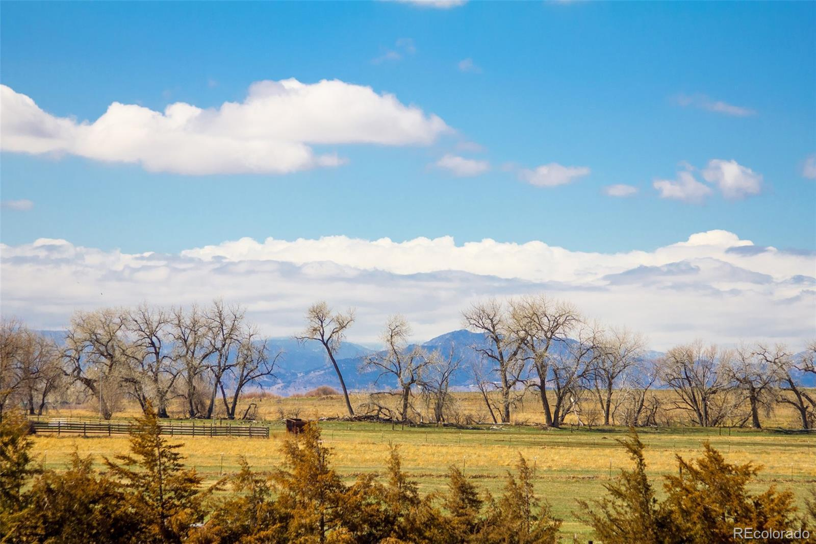 14737  County Road 3 photo