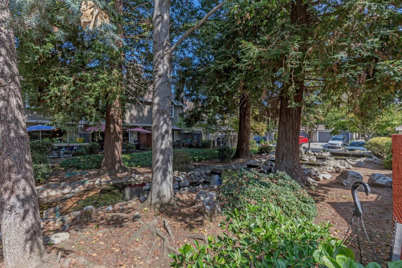 341 Creekwood CT photo
