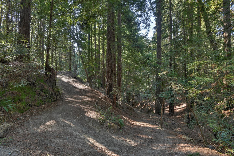 17800 Old Summit RD photo