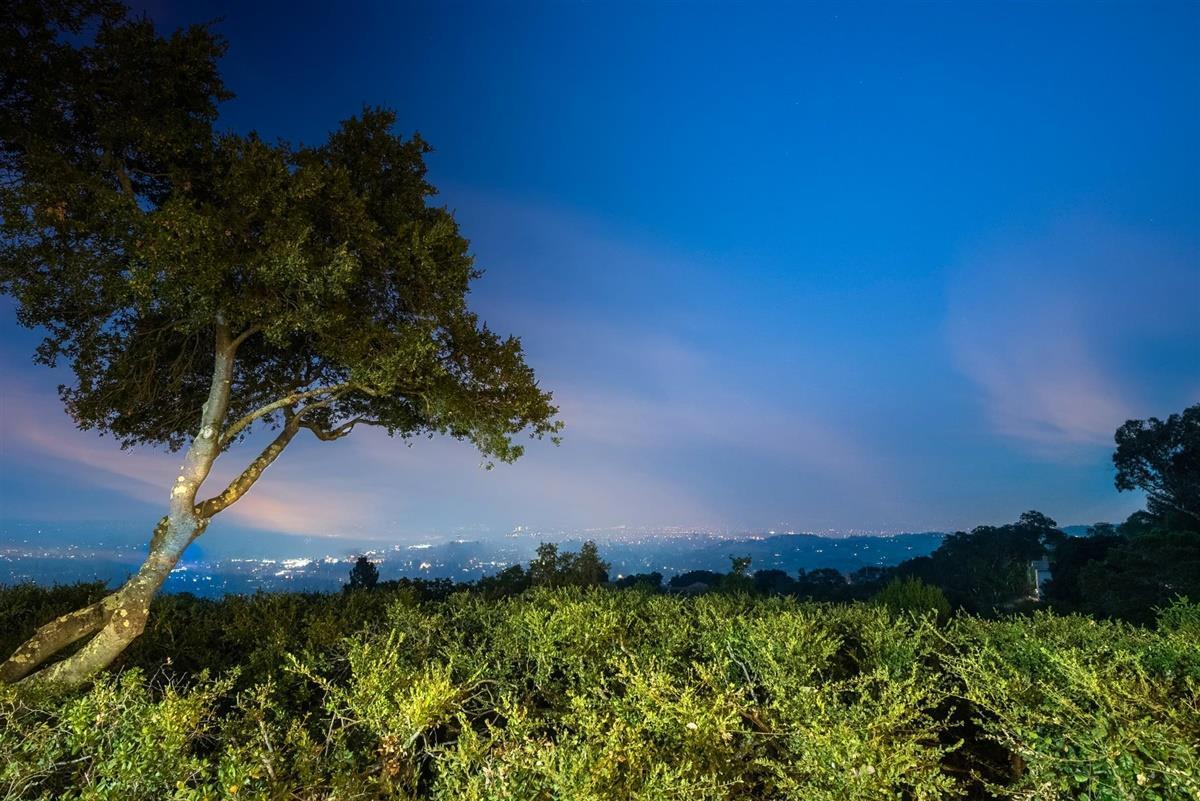 16355 Cypress WAY photo