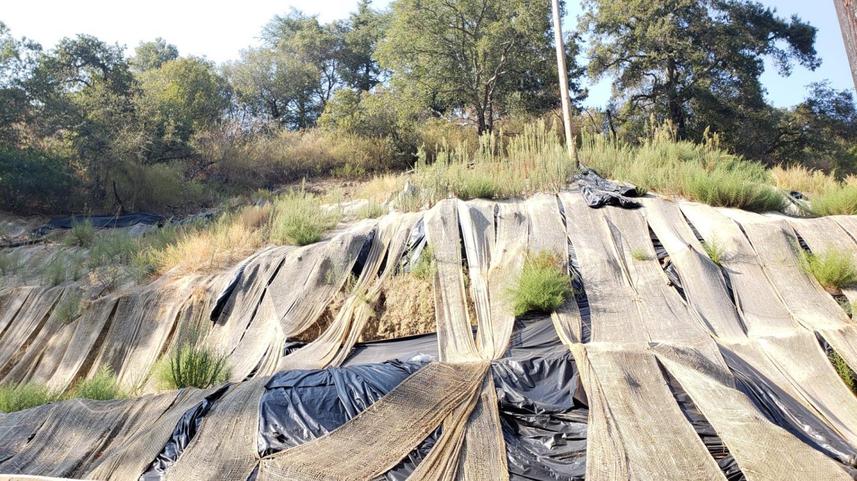 16231 Wood Acres RD photo