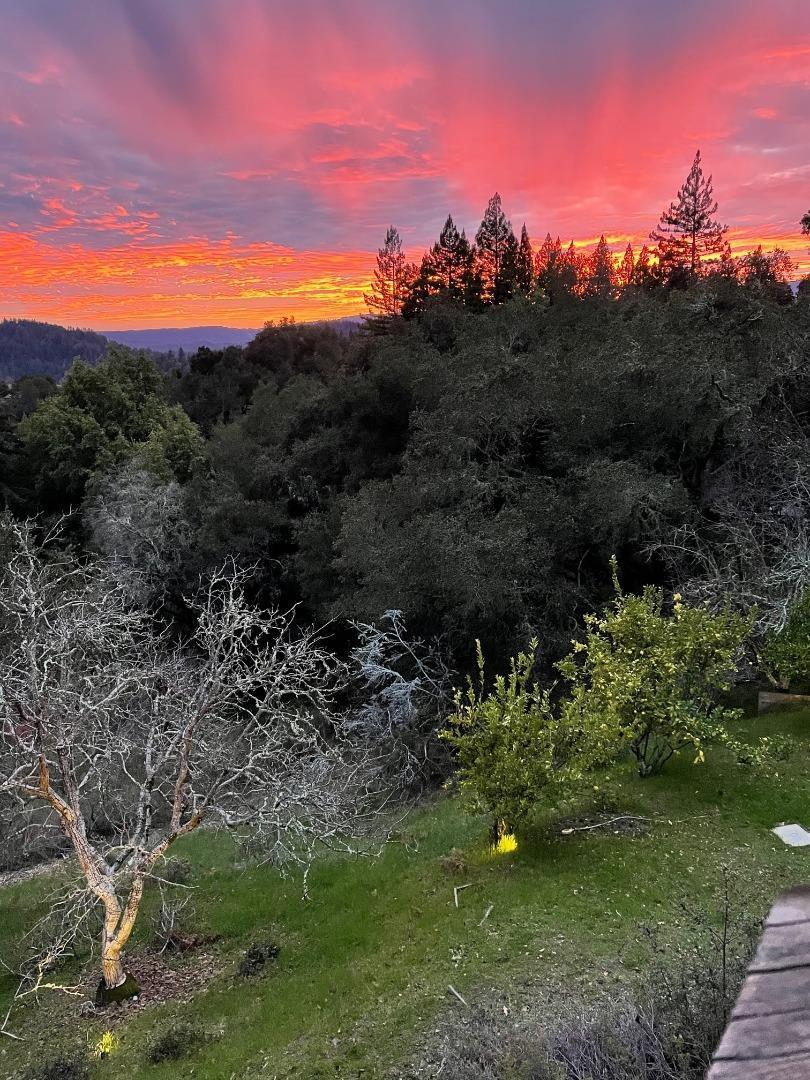 24705 Spanish Oaks RD photo