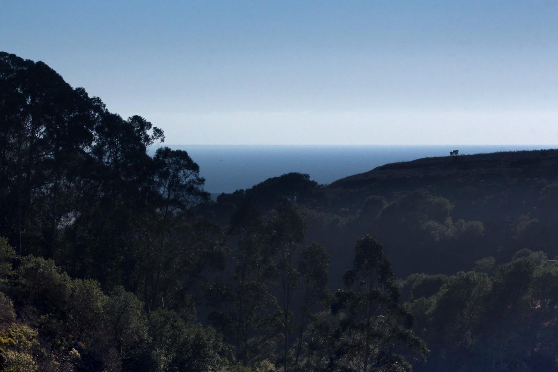 201 Cypress PARK photo