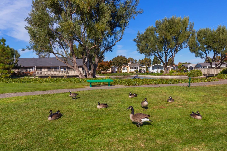 1220 Tasman DR 207 photo