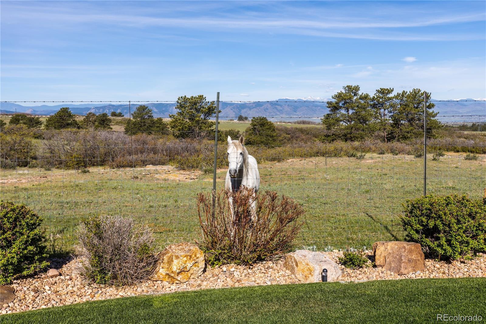 12501  Ventana Mesa Circle photo