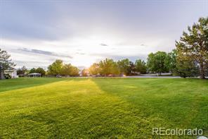12565 S Moose Creek Court photo