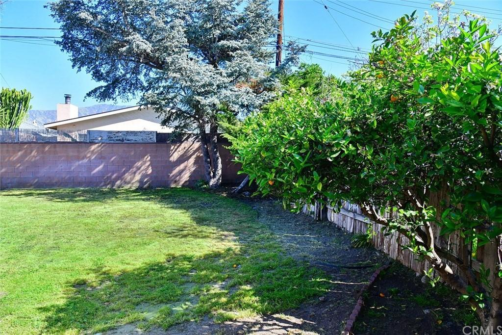 215 W Petunia Street photo